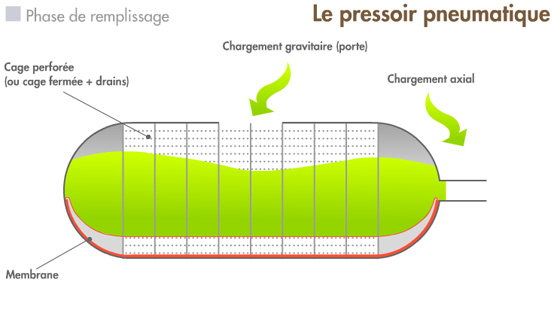 Animation d'un pressoir pneumatique